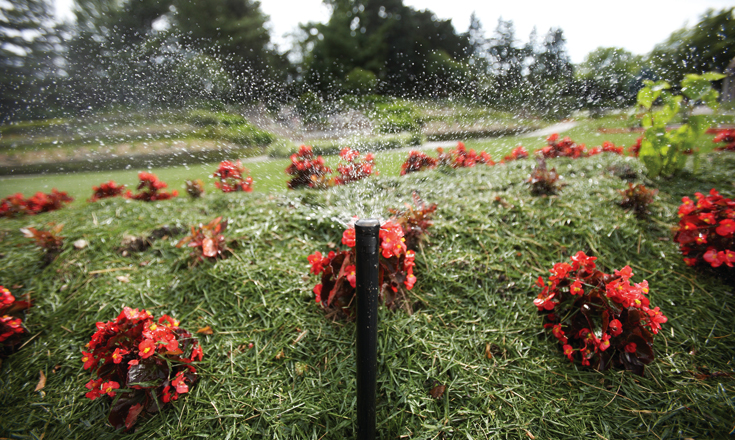 Dayton Irrigation Drip Service